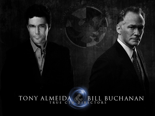 24 wallpaper entitled Tony & Bill