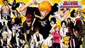 Bleach Seireitei - bleach-anime photo