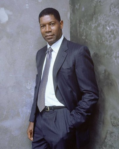 Dennis Haysbert as David Palmer