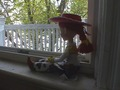 Jessie looks out the window - jessie-toy-story photo