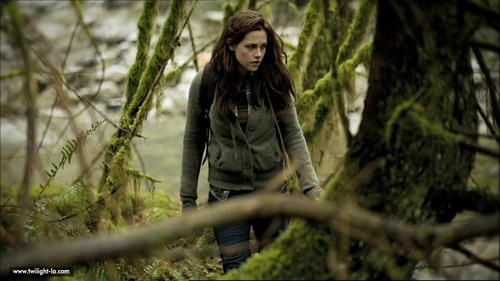"New / Old ""New Moon"" Stills"