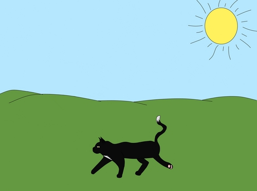 Ravenpaw on his way to Barley's.