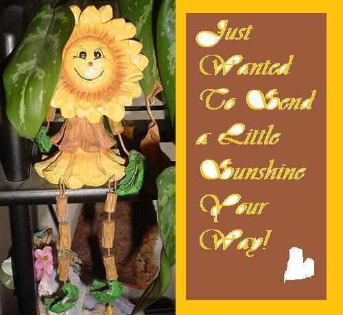 Sending you sunshine, Berni & Frances