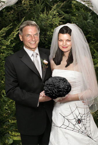 Navy CIS Hintergrund called abby & gibbs (wedding GABBY) MANIP Fan ART