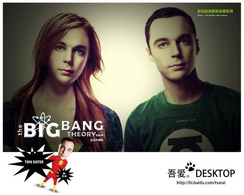 The Big Bang Theory wallpaper entitled 生活大爆炸 The big bang theory