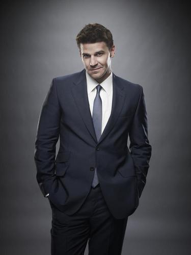 Seeley Booth wallpaper with a business suit, a suit, and a single breasted suit called Booth Season 6 Promo