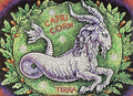 Capricorn - astrology photo