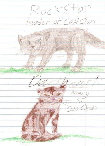 Coldclan: Leader and deputy