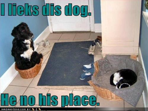 Cute'n'funny :D