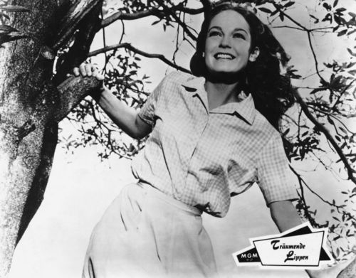 Elizabeth Hartman in A Patch of Blue