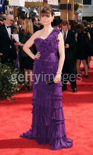 Emily Deschanel Обои probably containing a платье, бальное платье and a ужин dress called Emily at the Emmys
