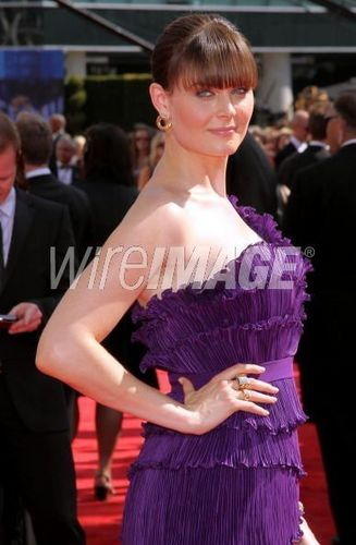 Emily Deschanel wallpaper probably containing a dinner dress, a gown, and a cocktail dress titled Emily at the Emmys