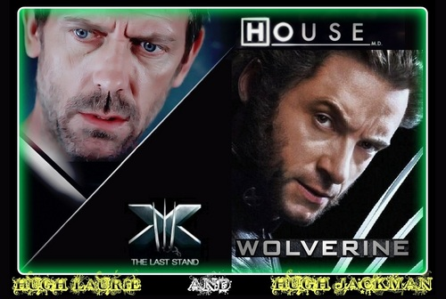 HOUSE AND WOLVERINE