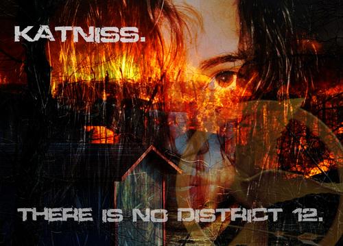Katniss - Catching brand