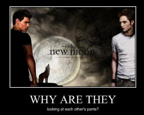Critical Analysis of Twilight Обои probably containing Аниме and a portrait titled New Moon Funny
