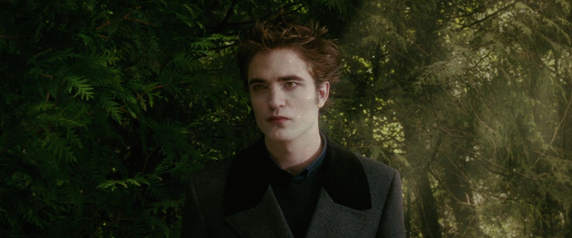 New Moon Screencaps Edward Cullen Image 15114298 Fanpop