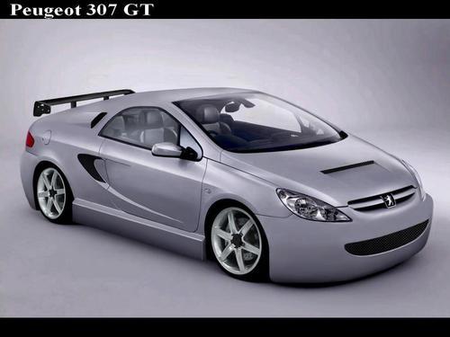PEUGEOT 307 GT
