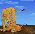 Sarabi&Simba - the-lion-king fan art