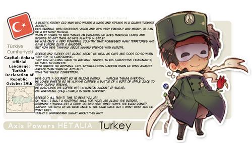 Turkey's new Profil