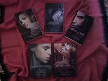 Vampire Academy पुस्तकें