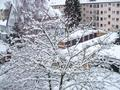 Winter in Germany 2009