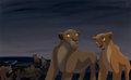 fight - the-lion-king fan art