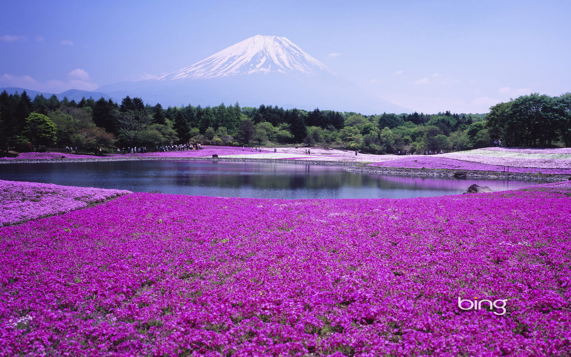 japan bing wallpaper
