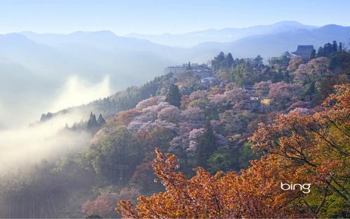 japanese landsape