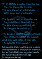 the brain - poem - psychology photo