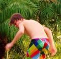 Justin Bieber punda