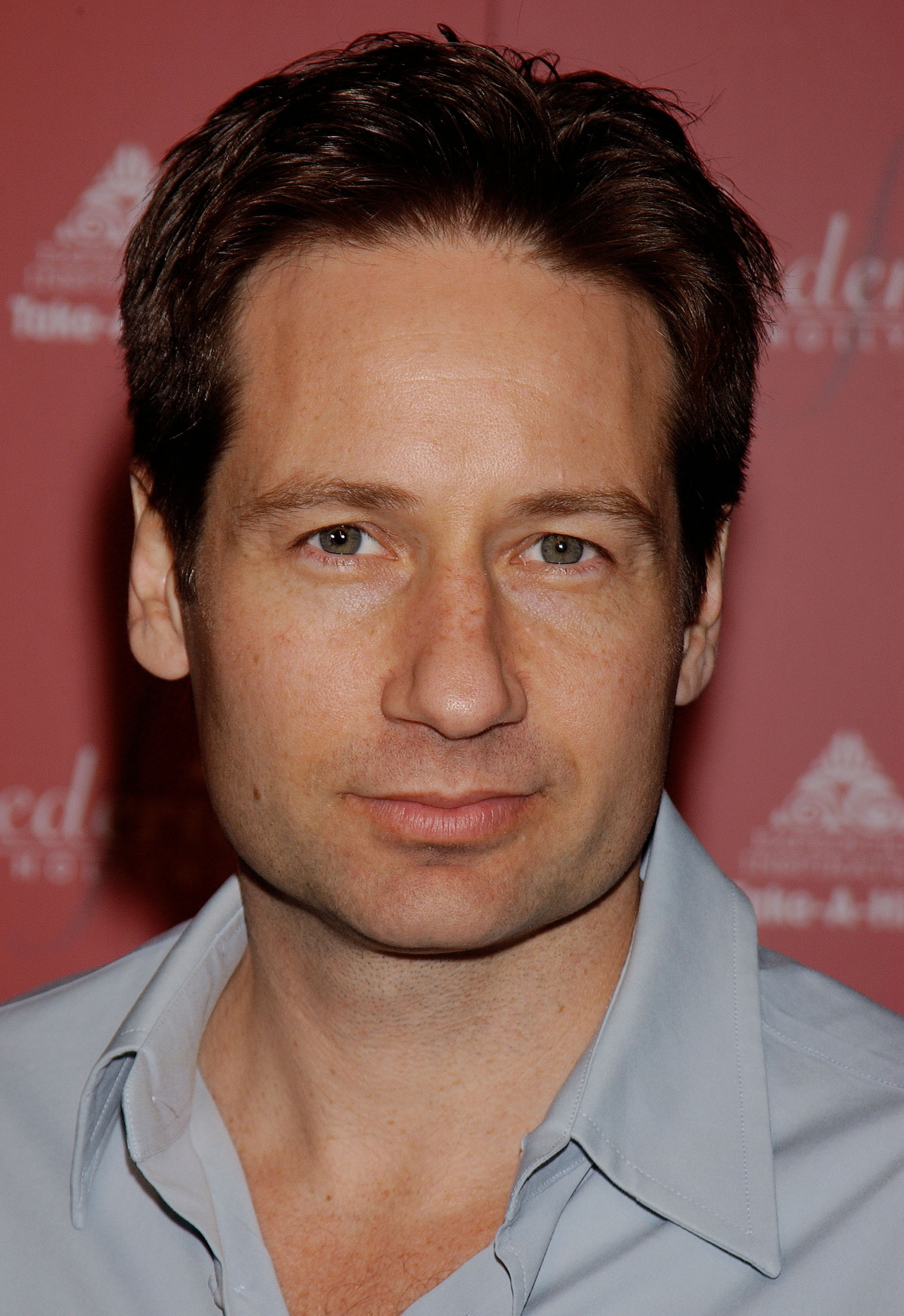 david-duchovny Photo