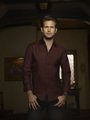 Alaric&lt;3 - boys-of-the-vampire-diaries photo