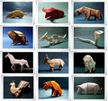 Chinese Zodiac Origami - origami photo