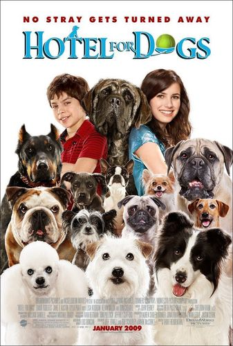 Hotel for Anjing Movie Poster 1