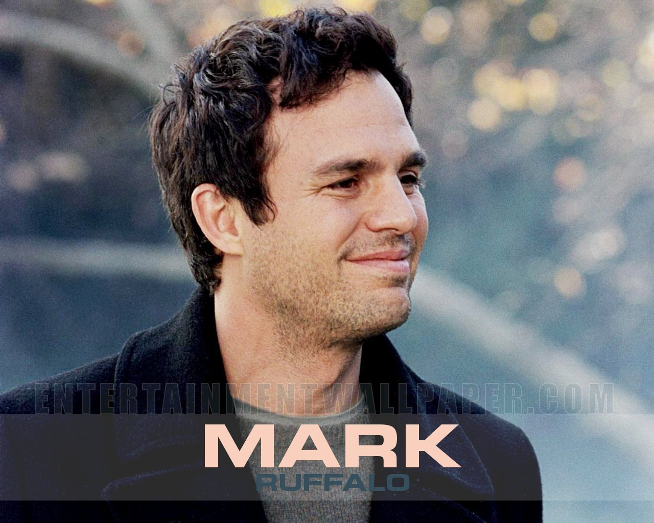 Mark Ruffalo - Picture Actress