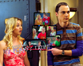 Penny and Sheldon - the-big-bang-theory wallpaper