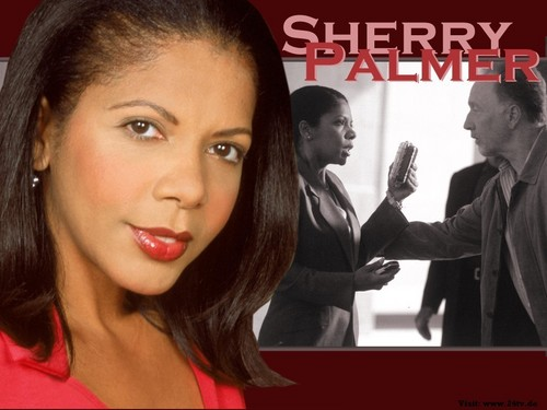 24 wallpaper containing a portrait called Sherry Palmer