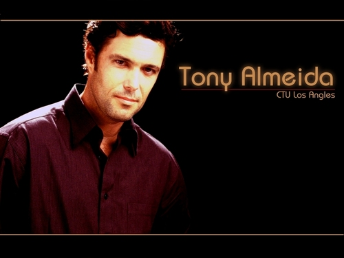 Tony Almeida - 24 Wallpaper