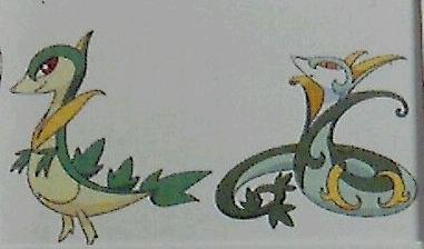 Tsutarja's evolutions revealed