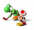 Yoshi and Toad - Hockey