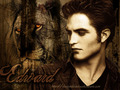 photo - twilight-series photo
