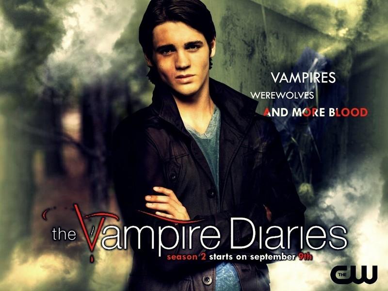 vampire diaries wallpaper