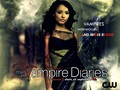 the-vampire-diaries - season 2 wallpaper wallpaper