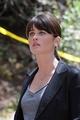 Agent Teresa Lisbon - The Mentalist