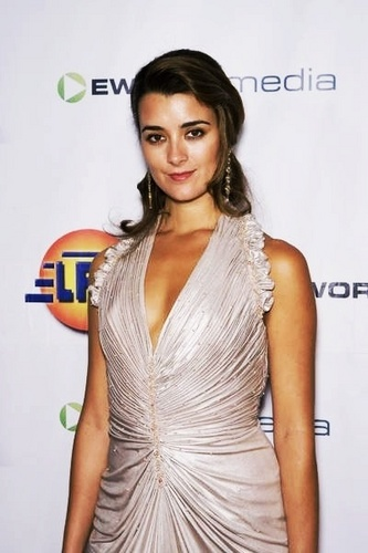 Cote De Pablo kertas dinding containing a makan malam, majlis makan malam dress entitled Alma Awards 08