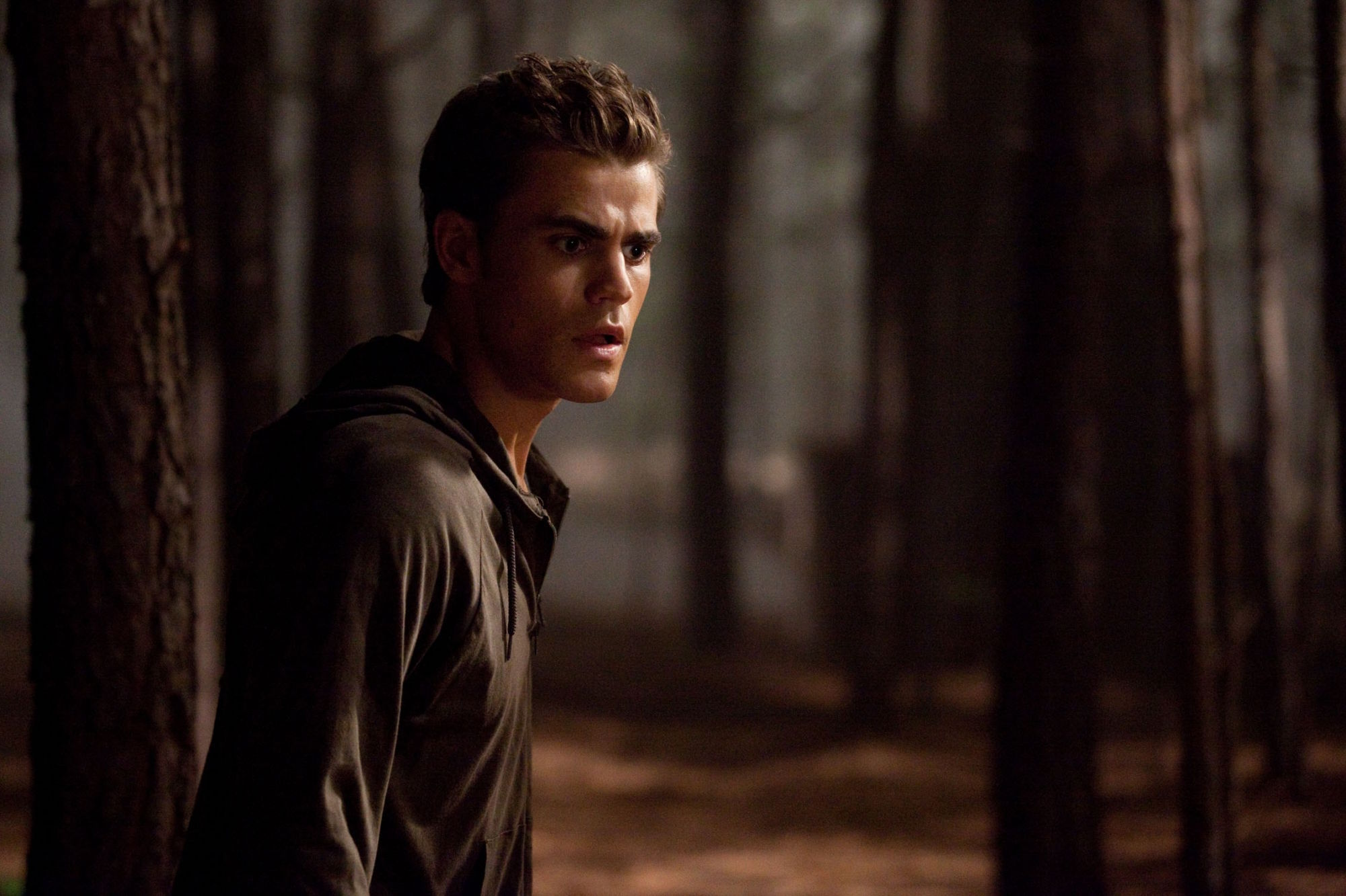 http://images4.fanpop.com/image/photos/15300000/Bad-Moon-Rising-2x03-the-vampire-diaries-tv-show-15391341-2000-1333.jpg