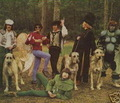 Bonzo Dog Doo-Dah Band - bonzo-dog-doo-dah-band photo