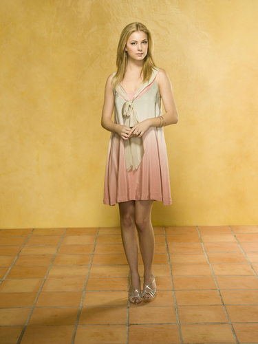 Brothers & Sisters - Season 4 Promotional 照片