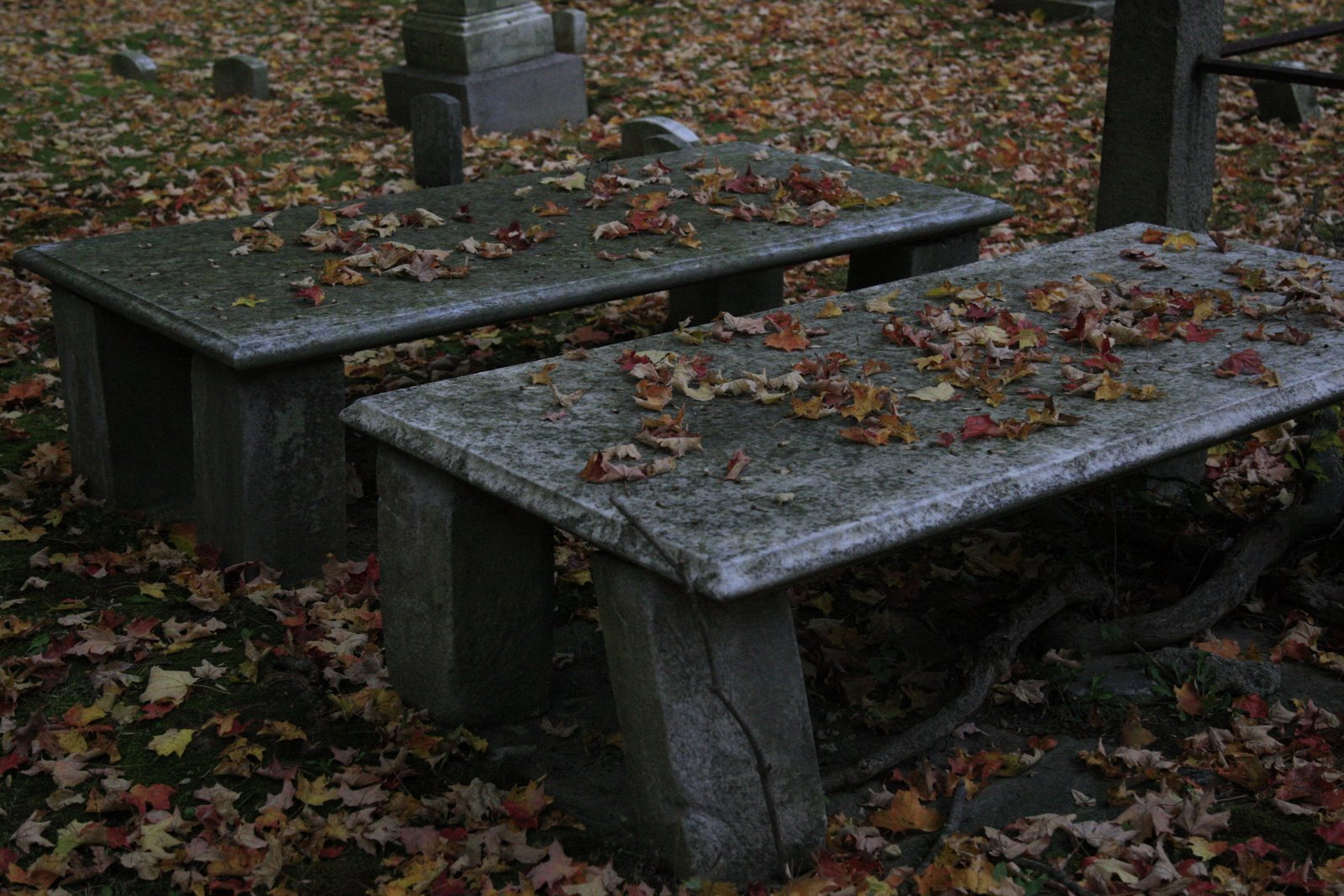 Cemetery benches halloween photo 15315699 fanpop Cemetery benches
