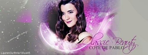 NCIS wallpaper containing a fountain called Cote de Pablo
